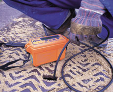 Triple Plus and Personal Gas Detector - view bigger image