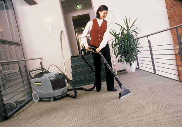 Professional Carpet Cleaner - view bigger image