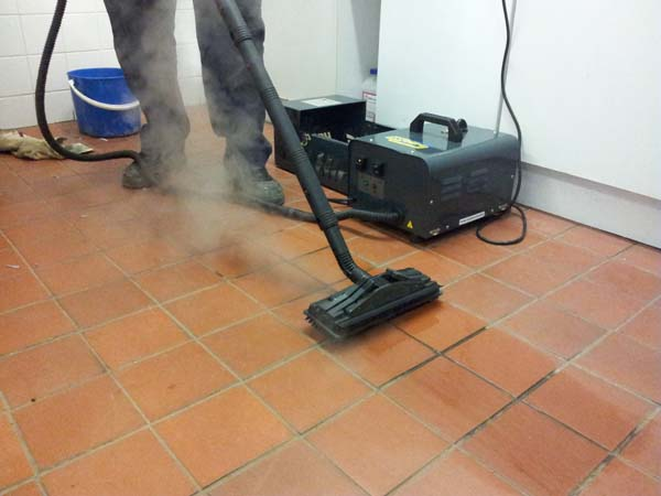 Domestic Steam Cleaner - view bigger image