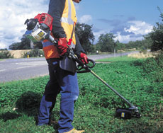 Petrol Brush Cutter / Strimmer - view bigger image